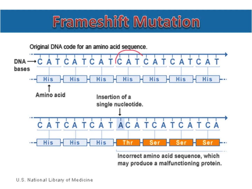 did the mutations result in a change in the final proteins if so describe the change Mutations result from dna damage  the result is a change in nucleotide sequence in the dna  or from mutations in dna repair proteins that render them defective.