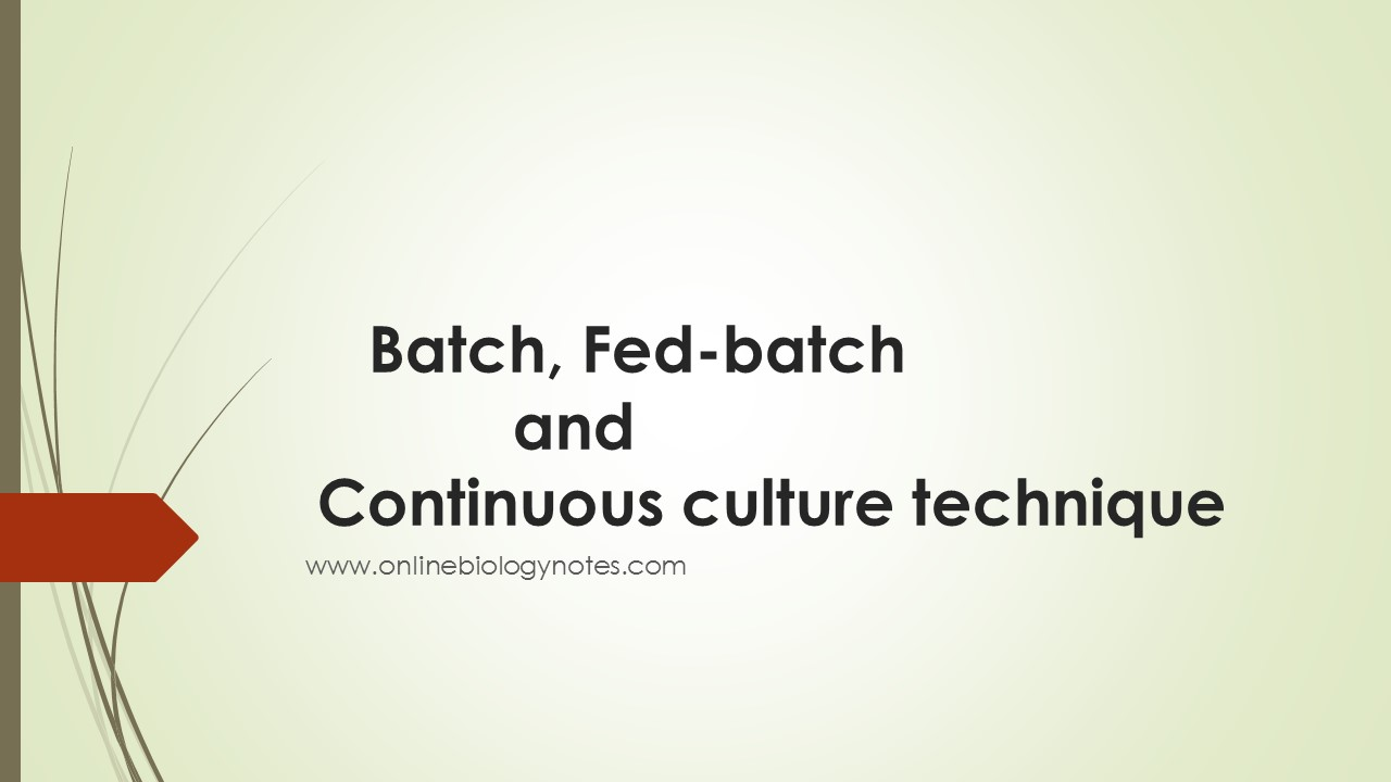 Cultivation Technique Of Bacteria Batch Fed Batch And