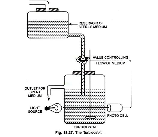 cultivation technique of bacteria  batch  fed-batch and continuous culture technique