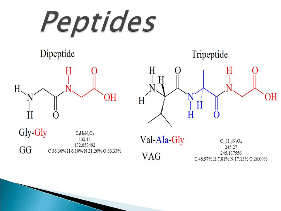 Peptide: Types and functions