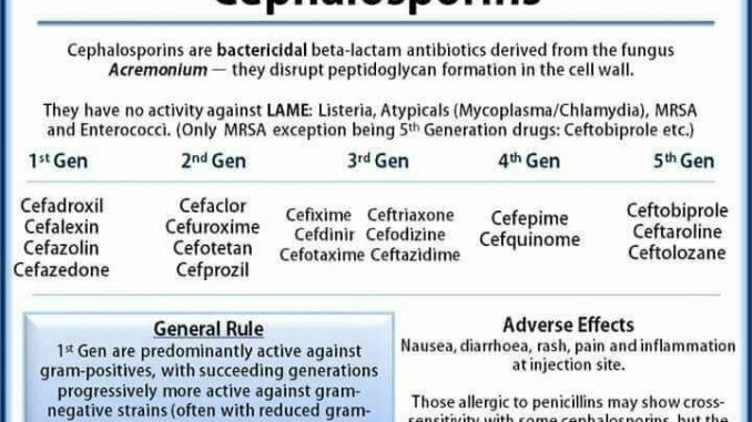 Cephalosporin structure, classification, clinical use and mode of