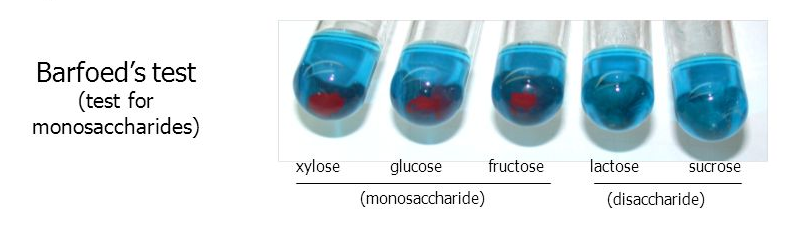 how to test for monosaccharides