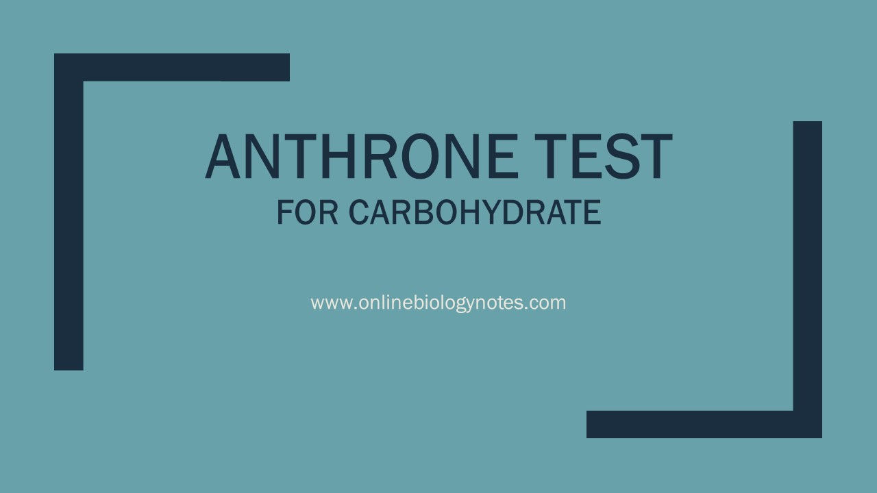 Anthrone Test Objective Principle Reagents Procedure And Result