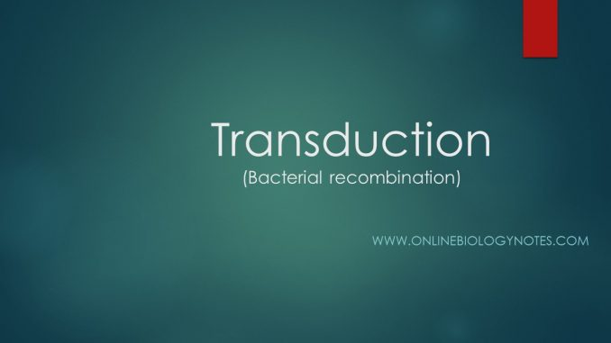 Transduction: generalized and specialized transduction - Online