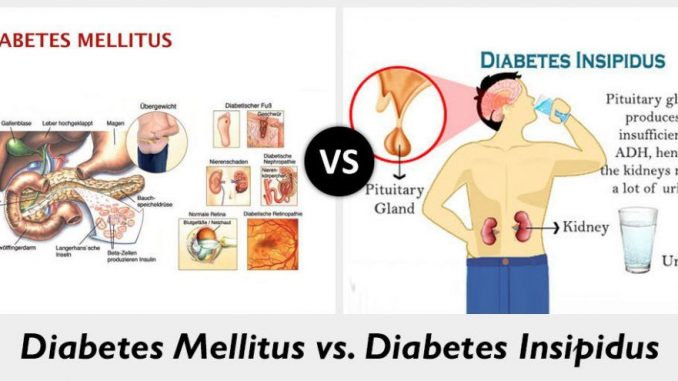 Difference between Diabetes mellitus and Diabetes insipidus -