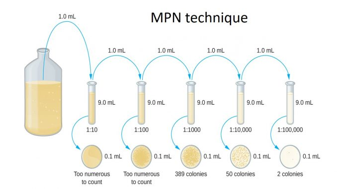 Most probable number (MPN) method for counting coliform