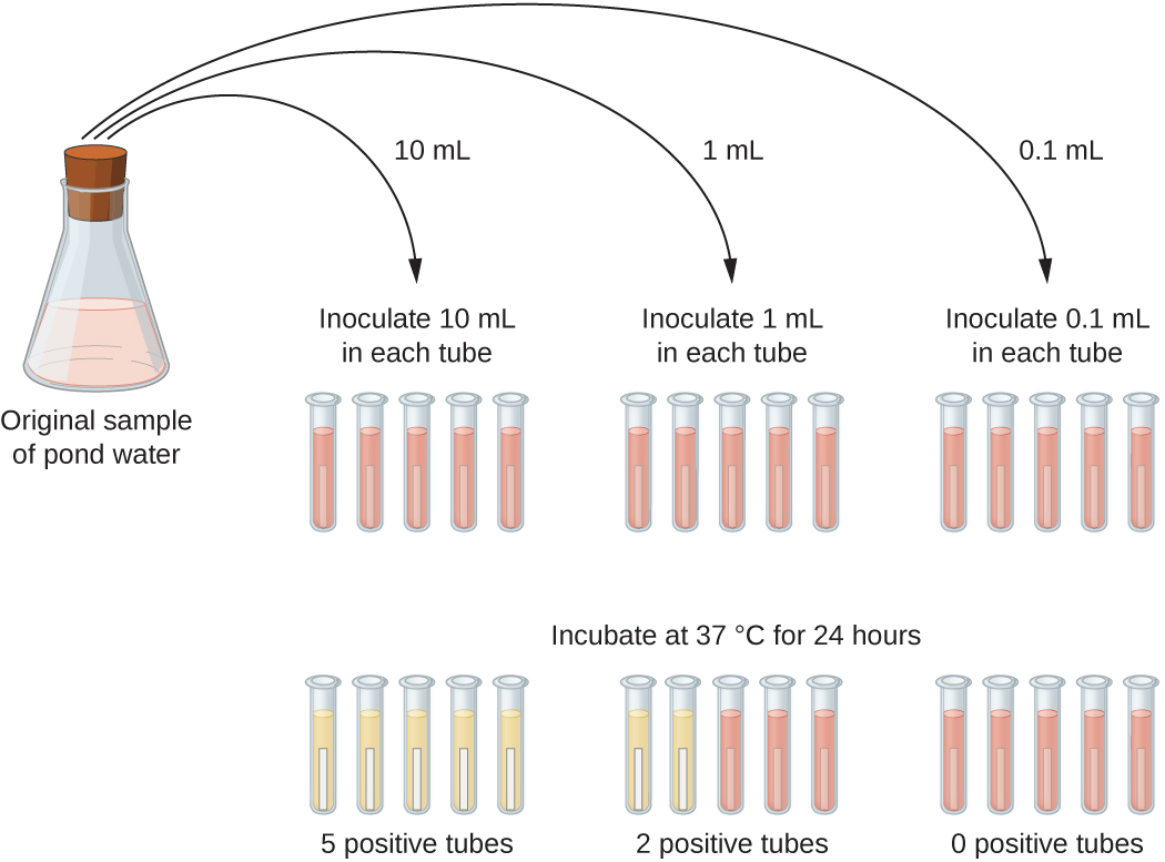 Most Probable Number Mpn Method For Counting Coliform
