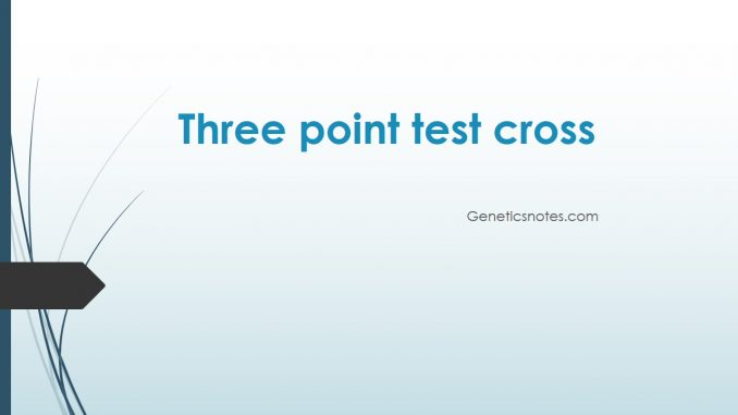 Three point test cross: gene order, map distance, inference ... on human genetic map, order genetic map, concept map, genetic code map, patricia map, hierarchy map, person standing on a map, symptom map, sequencing map, library map, antigen map, dna map, cloning map, vector map, plasmid map, norman map, ebola outbreak 2014 map, chromosome map, europe genetic map, genome map,